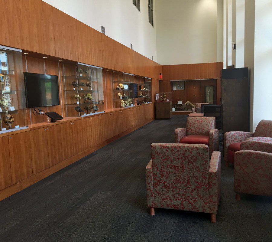 Liberty University Science Building interior2